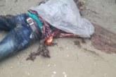 কক্সবাজারের চকরিয়া বানিয়ারছড়া স্টেশনে সড়ক দূর্ঘটনায় ২ জন নিহত ৪ জন