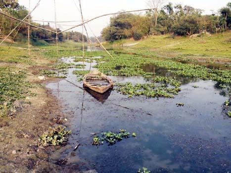 নবাবগঞ্জ থেকে হারিয়ে যাচ্ছে ঐতিহ্যবাহি ইছামতি নদী