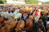 শেষ দিনের 'ফাঁদ' এড়াতে সতর্ক ক্রেতা-বিক্রেতারা | দৈনিক আগামীর সময়