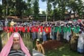 জগন্নাথপুরের বিশিষ্ট আলেমে দ্বীন মাওলানা বদিউজ্জামানের জানাজায় হাজার হাজার মানুষের ঢল