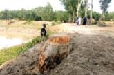 নবীগঞ্জে পৌর স্বেচ্ছাসেবকলীগ সম্পাদকের বিরুদ্ধে সরকারী কাছ কাটার অভিযোগ