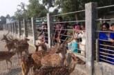 সুুন্দরবনে আরও চারটি নতুন পর্যটন কেন্দ্র হচ্ছে