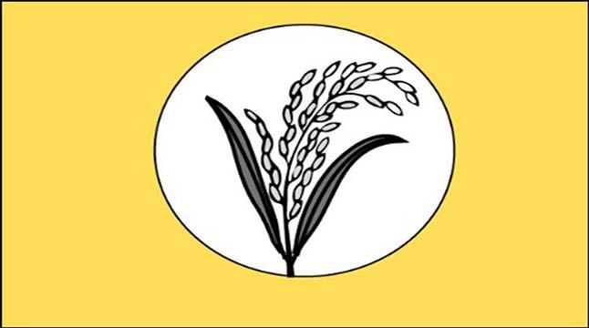 ধানের শীষে লড়বে জামায়াত, ২২ আসনে ছাড়
