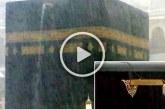 বৃষ্টির পানির সাথে চোখের পানি একাকার হলো কাবা শরিফে! (ভিডিও)