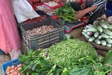 কচুরিপানার কেজি ৮০ টাকা, ভিডিও ভাইরাল