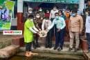 মুজিববর্ষ উপলক্ষে ঢাকার নবাবগঞ্জে মাছের পোনা অবমুক্তকরণ