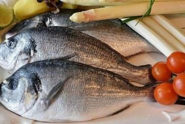 সপ্তাহে কয়দিন মাছ খাবেন?