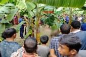 ঝিনাইদহে যুবককে শ্বাসরোধে হত্যার পর লাশ ফেলল কলাক্ষেতে